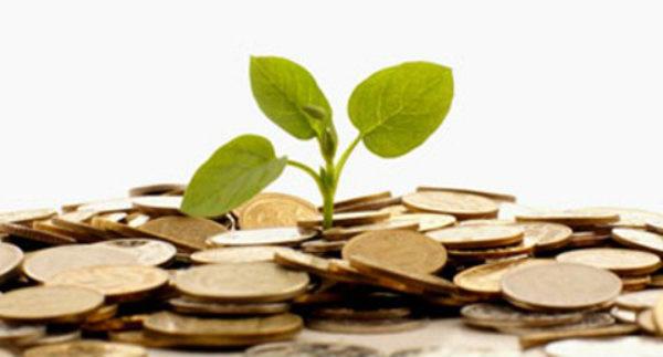 Environmental balance sheet: an alternative option for EU