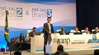 Shell secures three pre-salt blocks contracts in Brazil