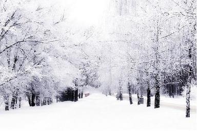 بارش برف و باران و آذرخش از عصر جمعه در البرز
