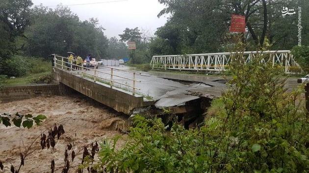 چرا با یک بارندگی، پلها تخریب میشوند؟