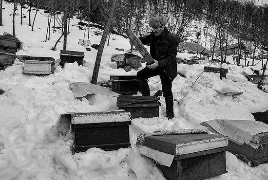 تصاویر| بحران برف در گیلان پس از شش روز