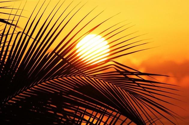 افزایش دمای مناطق ساحلی خوزستان تا 50 درجه