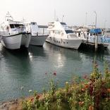 تفاهمنامهای سهجانبه برای تجاریسازی فناوریهای دریایی در کشور