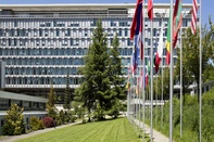 IRU research into accident causation cited as WHO ministerial meeting spurs global action