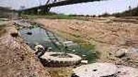 ◄ تنها رودخانه قابل کشتیرانی ایران در وضعیت