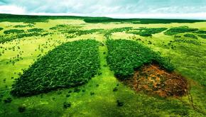 اپیدمی کرونا بخشی از تغییرات اقلیمی است؟