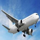 بازداشت یک آلمانی برای تهدید به بمب گذاری در هواپیما