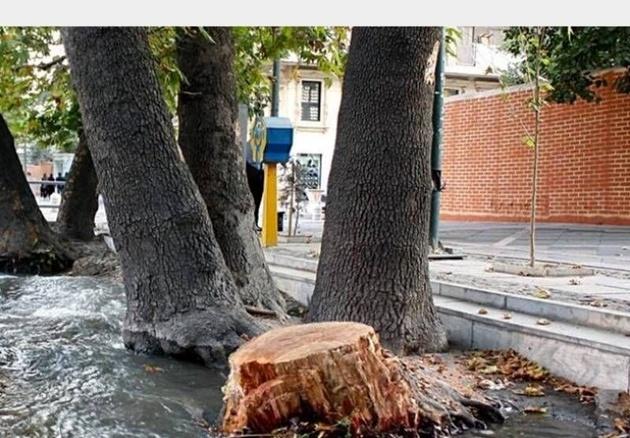 قصههای خیابان ولیعصر روی نقشه تهران بارگذاری شد