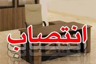 مدیر منطقه ویژه اقتصادی بندر نوشهر منصوب شد