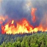 آتشسوزی گسترده در سه منطقه از جنگلهای گلستان