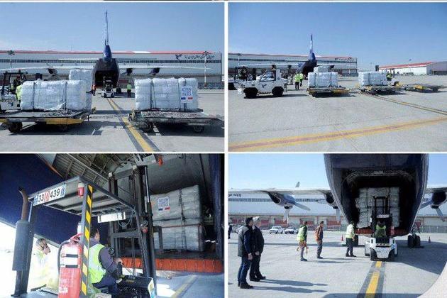 فرود هواپیمای حامل کمکهای فرانسه به سیلزدگان در فرودگاه امام