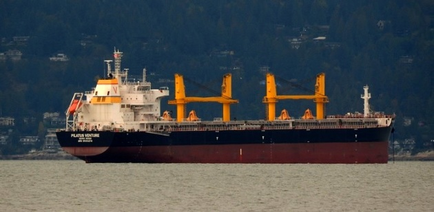 Grounded ship causes delays in Argentina's Parana river