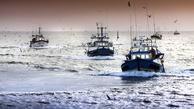 EU proposes measure to protect deep-sea species in North-East Atlantic