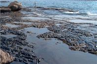 لزوم مدیریت یکپارچه برای آلودگی نفتی در سواحل خزر