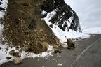 زخم کهنه «کمبود اعتبارات جادهای» در سرمای زمستان سر باز کرد