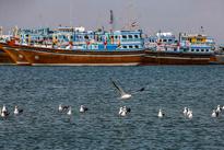 ساحل مکران در آخرین روزهای پاییز