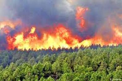 مهار آتش سوزی جنگلهای کوه خامی گچساران پس از ۳ روز